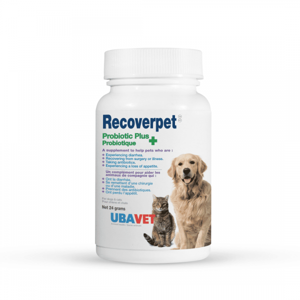 RECOVERPET 24 GRAMS