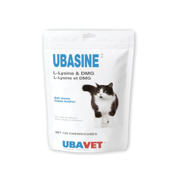 UBASINE L-Lysine and DMG Soft Chews
